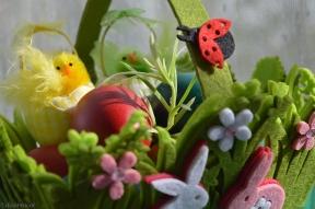 green bunny joy