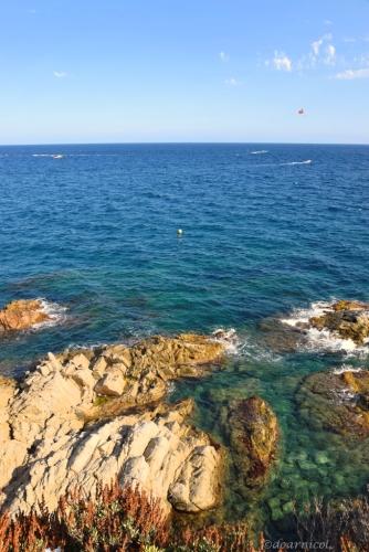 blue... on the rocks