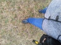 blue and black tiptoe
