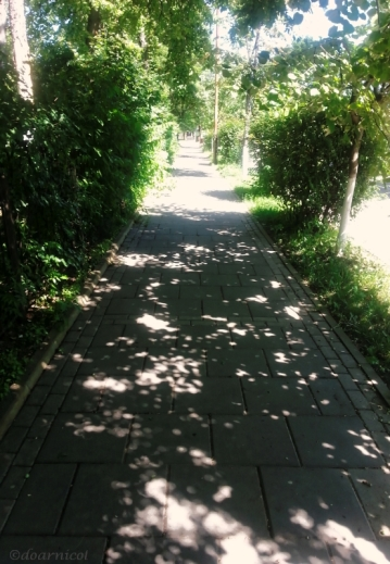 along daily paths