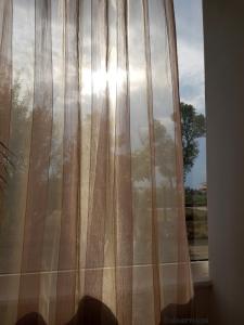 magical morning brightness