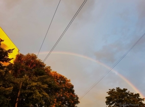rainbow afternoon