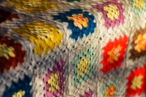 comfy colors