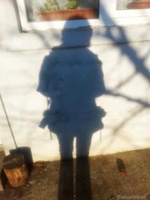 bright fuzzy shadow