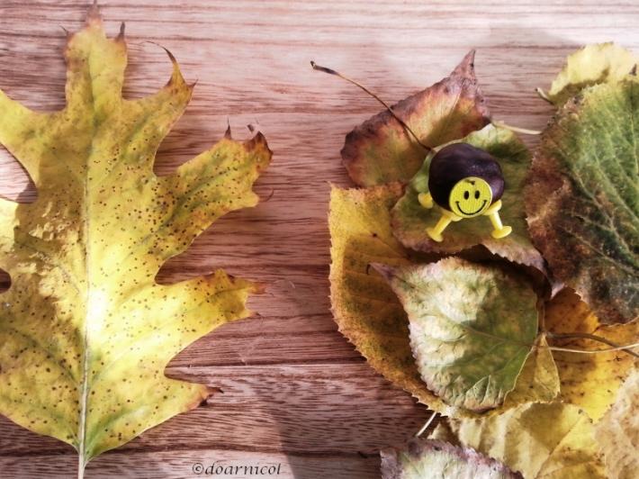 hm... smells like leafy autumn
