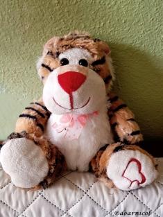 a cute fluffy hug