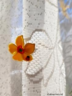 sunny curtain delight