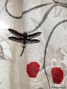 dragonfly elegance